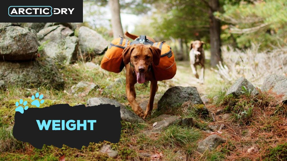 best-dog-hiking-backpacks