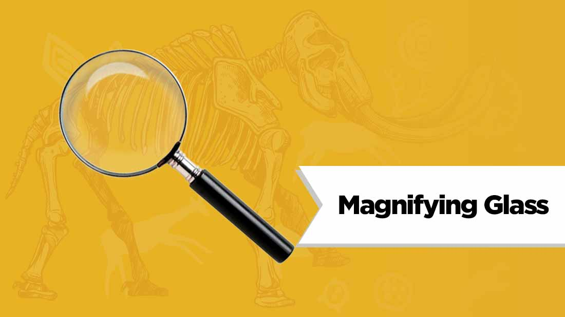 magnifying-glass-fossil-hunting