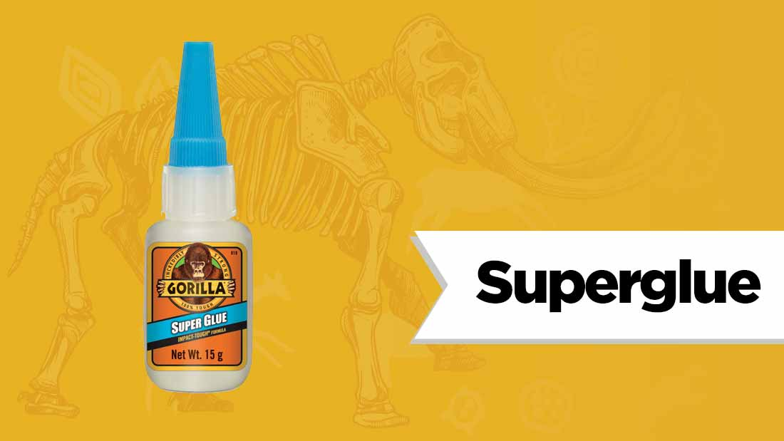 superglue-fossil-hunting
